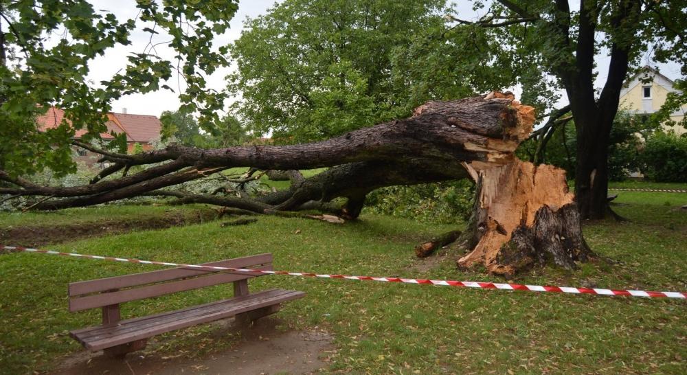 A vihar emberéleteket követelt és károkat okozott