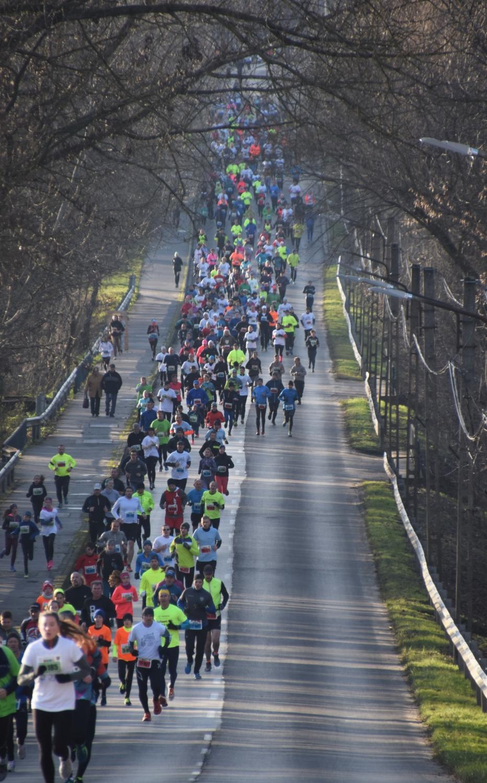 Több százan húztak futócipőt