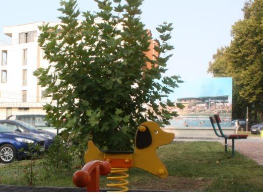Rugós hinták a szelfipont közelében