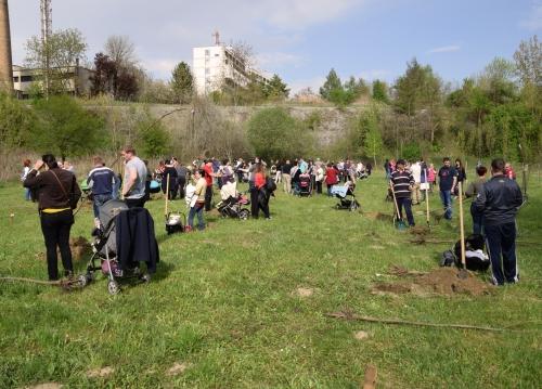 Faültetés a kis-polgárok parkjában