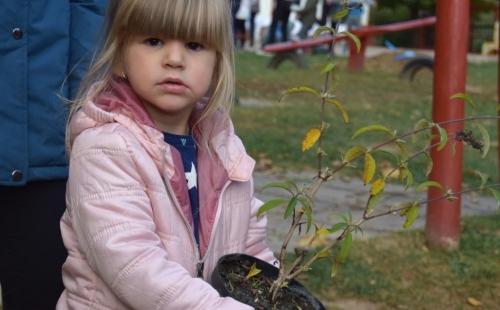 Virágokat és fát ültettek a gyerekek és szüleik